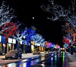 Request for Proposal – Holiday Lighting and Decorating Services